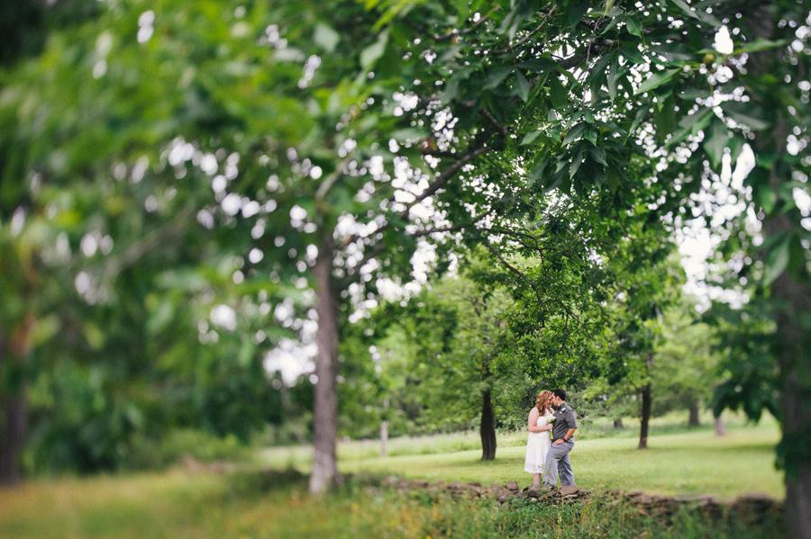 Landis Arboretum  41
