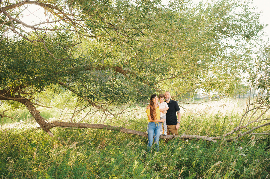 far shot of family posing for camera in field with large tree